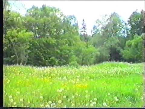 Мосальск 1997 год. Зарисовки на тему.