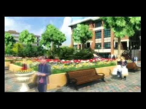 Charleston Business and Residential Development Project