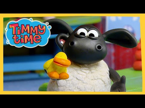 Timmy's New Friend | New Timmy Time