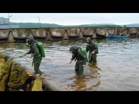 Тот, кто служил в частях Спецназа  (СпН  ВМФ)