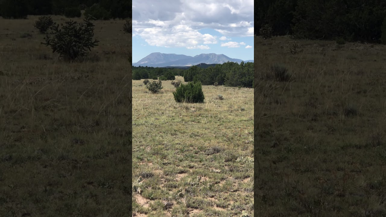 2 acres at the top of the hill w trees and open space. Ref.Cucharas-465