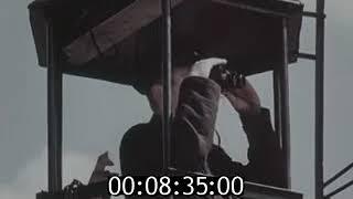 Лесные пожары   Фильм ЦНФ 1964 360p