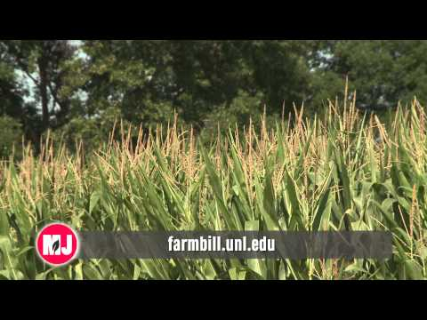 Farm Bill & Land Lease Info - Allan Vyhnalek - November 28, 2014