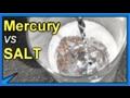 MERCURY vs SALT Defies ALL LOGIC