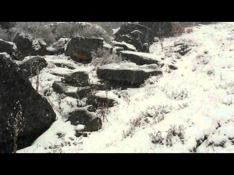 Sikkim extrem snowfall