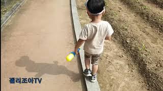 아이들과 경기도 수원에서 갈만한 곳 광교산 반딧불이 유…