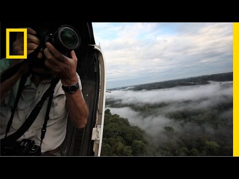 Amazon Adventure—Documenting Life in Ecuador's Yasuní National Park | National Geographic
