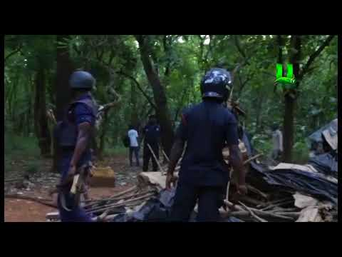 Decongestion: Taskforce storm Tamale forest reserve