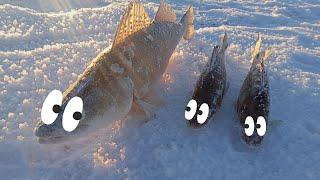 Зимняя рыбалка на судака Рыбачим на водохранилище Приехали МЧС