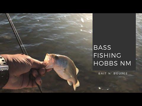 Hobbs New Mexico Bass Fishing (Using The Drop Shot Rig)