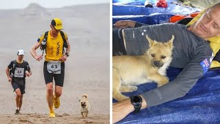 This Stray Dog Joined Him On A 155 Mile Desert Run  Then After The Race He Knew He Had To Find Her