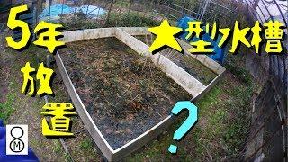 5年放置した大型水槽の水を抜いたら… エッ、まさか? ★解説ブログあり thumbnail