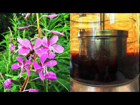 Рецепт Копорского чая. Обсуждение на LiveInternet