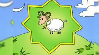 Qurban Bayramına Özəl Video