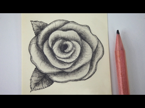 How to draw a rose - free art lesson - YouTube