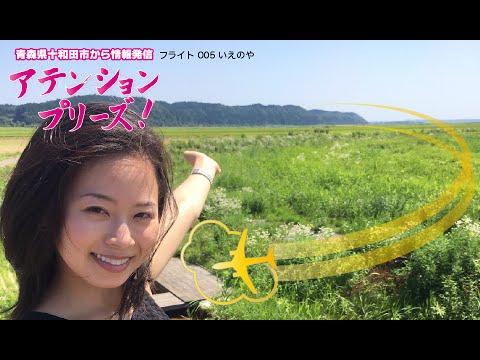 青森県十和田市から情報発信!アテンションプリーズ 005 いえのや (ラーメン)
