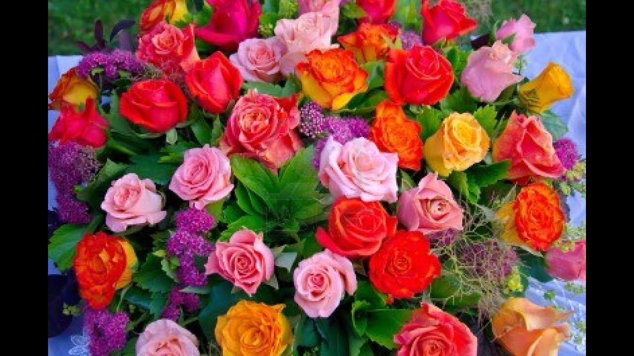 dc71deba9ba26 Cómo hacer arreglos Florales con Rosas - TvAgro por Juan Gonzalo Angel