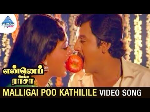 Enne Petha Raasa Movie Songs   Malligai Poo Kathilile Video Song   Ramarajan   Rupini   Ilayaraja