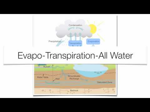 The Water Cycle-Hommocks Earth Science Department