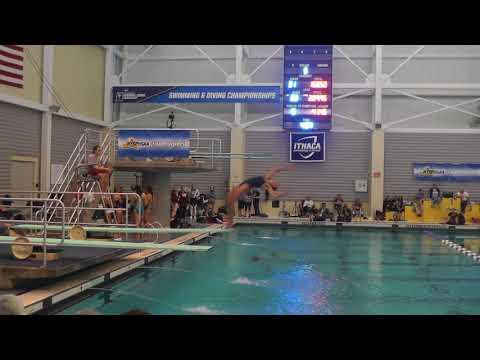 NYS Diving Championships - 2017