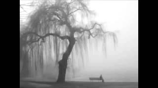 Sonata IV - Solitude