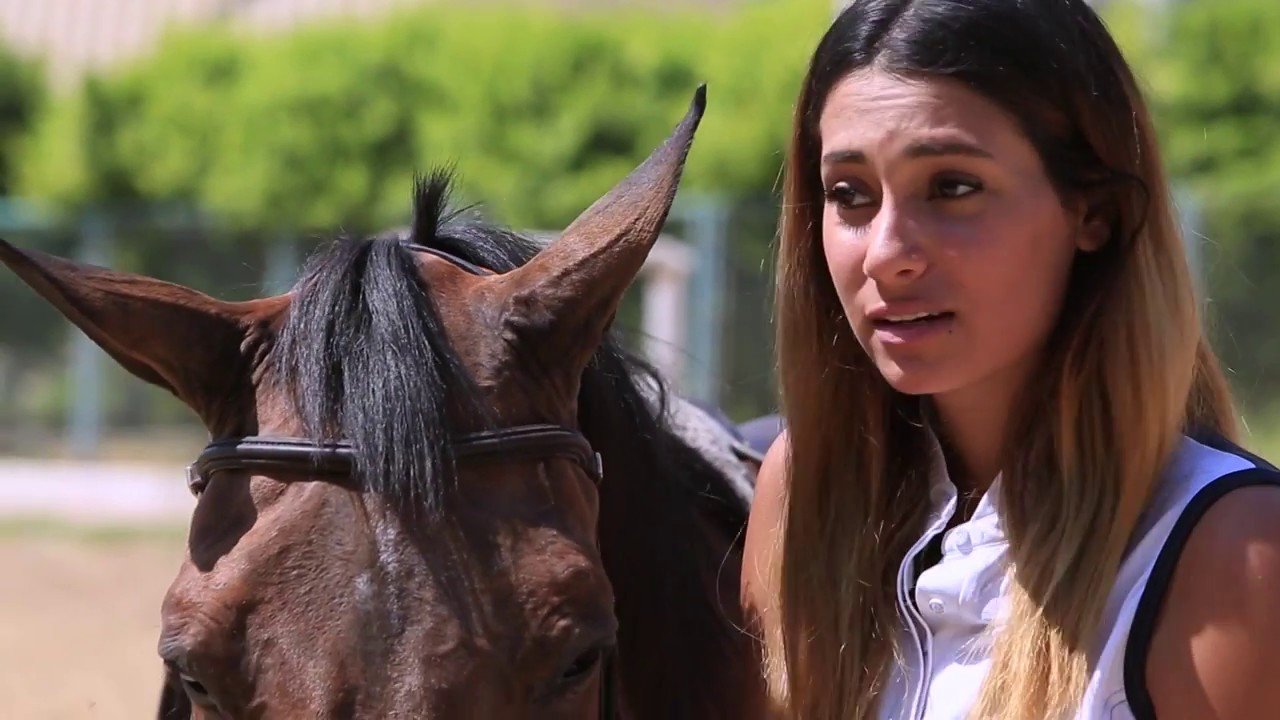 BBC عربية:رياضية: أبرز التقارير عن واقع المرأة الرياضية في الدول العربية وإنجازاتهن في مختلف الألعاب