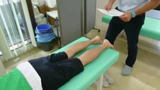 腓腹筋損傷の検査診察 上腕三頭筋損傷 検索動画 19