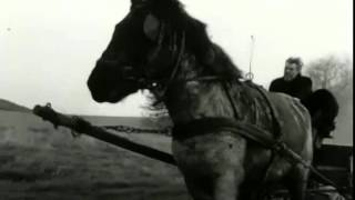 A Torinói ló (El caballo de Turín. Béla Tarr & Ágnes Hranitzky, 2011).