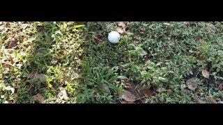 Fleshlight Golfing