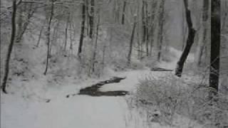 Winter Snow Storm Hiking Path