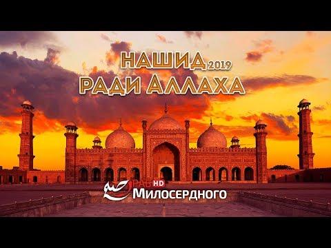 "Нашид ""Ради Аллаха"" - 2019 ᴴᴰ"