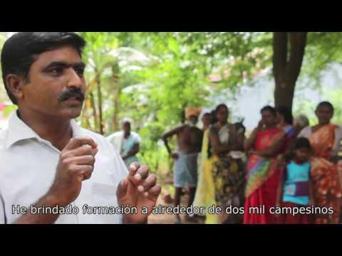 Hunger4bees. Cap1 India ES