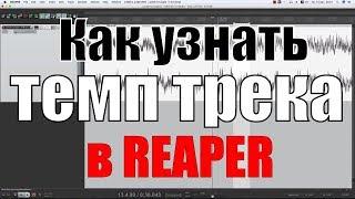 Как узнать темп (bpm) трека в рипере (Cockos Reaper)