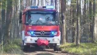 Pożar lasu i młodnika w Dębowcu.
