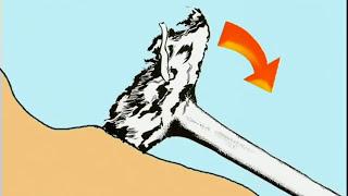Sturmholz, TOP-Arbeit im Sturmholz, Teil 2
