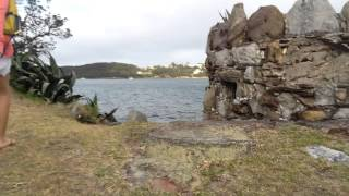 shark island sydney new