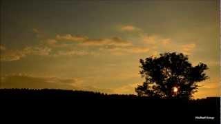 ひぐらしの鳴き声8時間版【癒し系作業用BGM / 勉強用BGM】