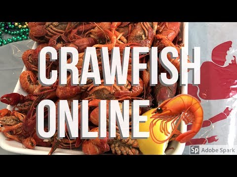 I Bought Crawfish Online🦐