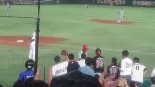 日米野球 11月11日 一塁手カルロス・サンタナ選手が子供にボールをプレ...