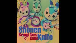album: Brand New Knife, 1996.