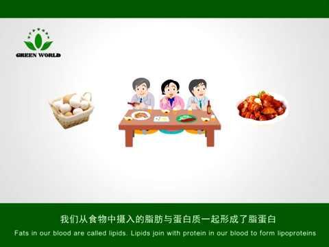 Green World Lipid Care Tea Youtube