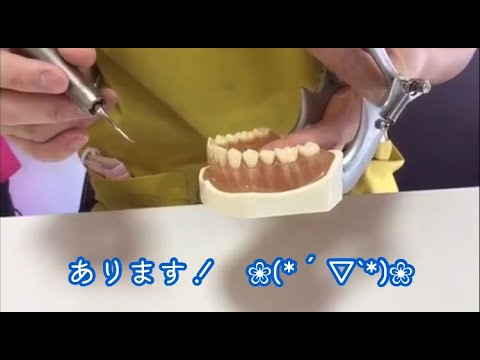 【正常な歯肉→歯肉炎】 あきらめないで! まだ助かる歯肉炎 解説✨