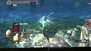 Dark Souls: Farming Darkroot Gardens..7000 souls per run..