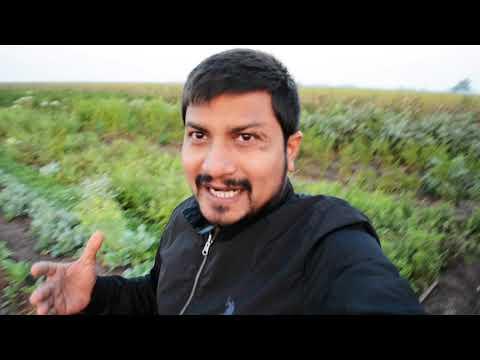 કાઠિયાવાડી ખાણી પીણી ની મોજ | Nikunj Vasoya Farm Tour Khijadiya Jamnagar Gujarat