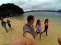 Crazy Monkey on Monkey Island In Vietnam