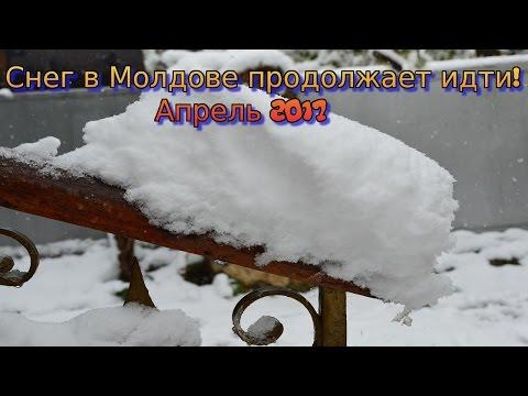 Снег в Молдове.  Стихия разбушевалась! Апрель 2017 года.