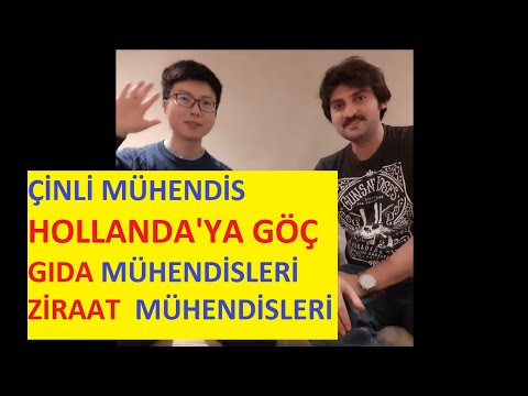 HOW CHINESE ENGINEER CAME TO NETHERLANDS, AGRICULTURAL ENGINEERS   FOOD ENGINEERS