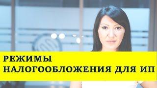 Режим налогообложения для индивидуальных предпринимателей в Казахстане