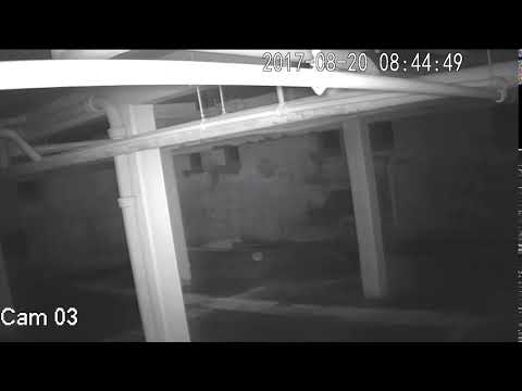 orb comes out of post: Private Investigation 9/1/2017