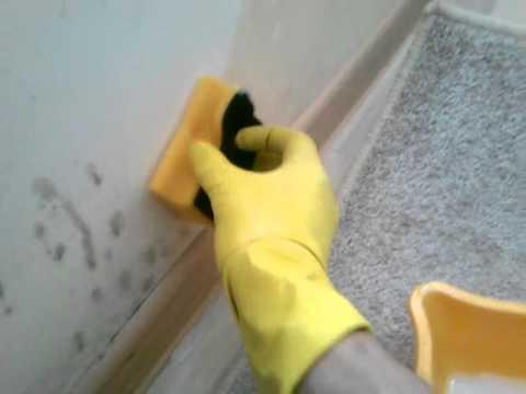 Простой способ убрать грибок со стен(2)